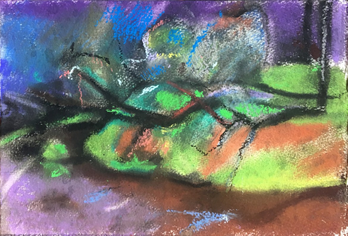 Michael Knight Donnelly River study 2 - pastel on paper
