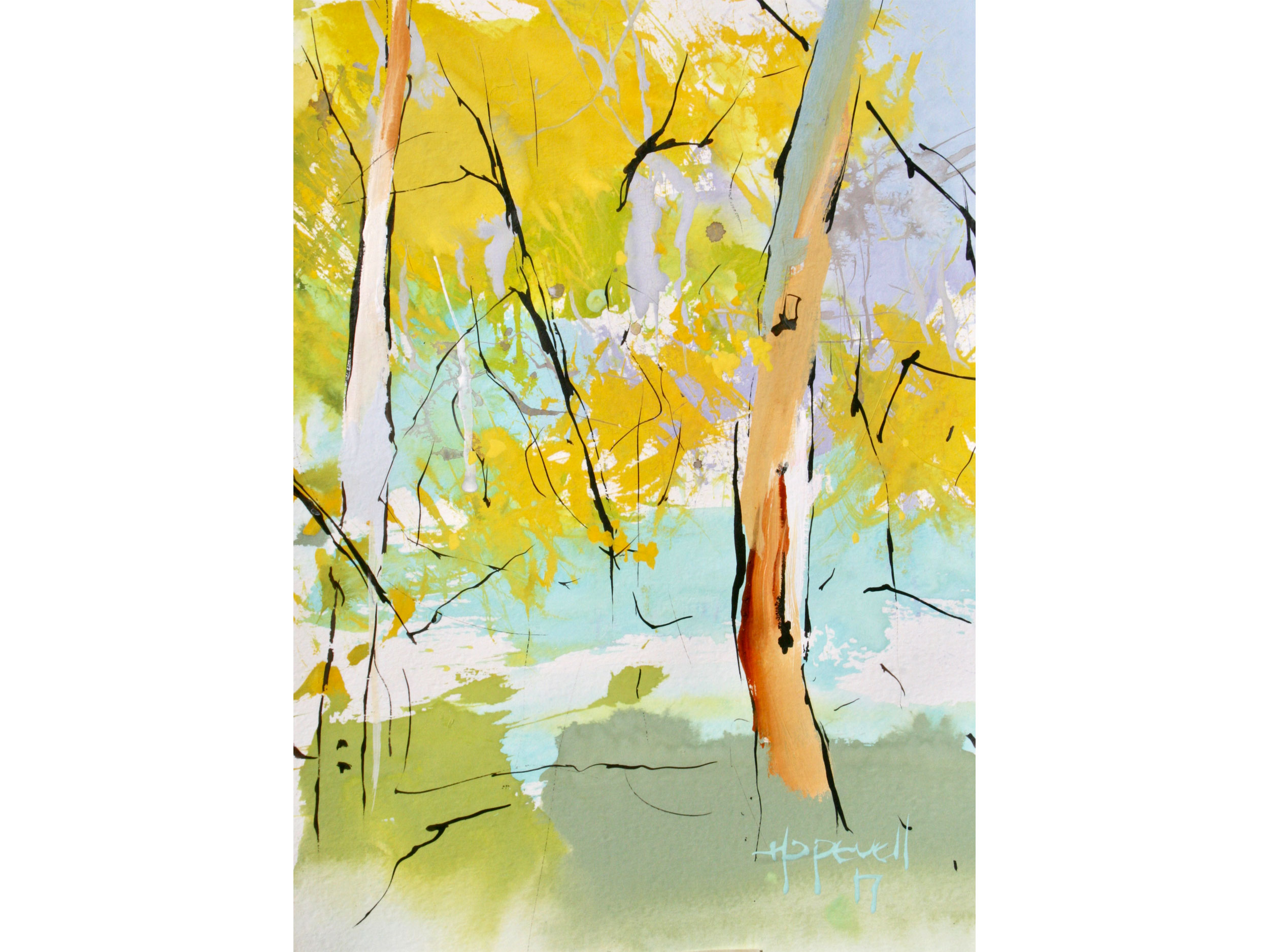 Jennifer Hopewell, Forest, Donnelly River resize 5