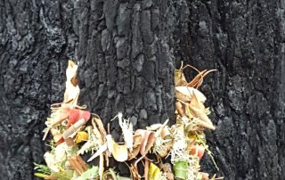 Kate Campbell-Pope, forest garland in-situ wrap