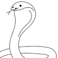 Drawing cobra