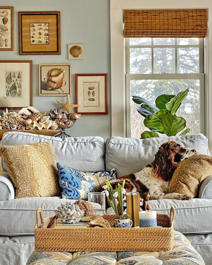 coastal home decors