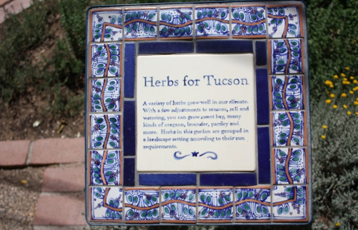 Traveling To…Tucson Botanical Gardens