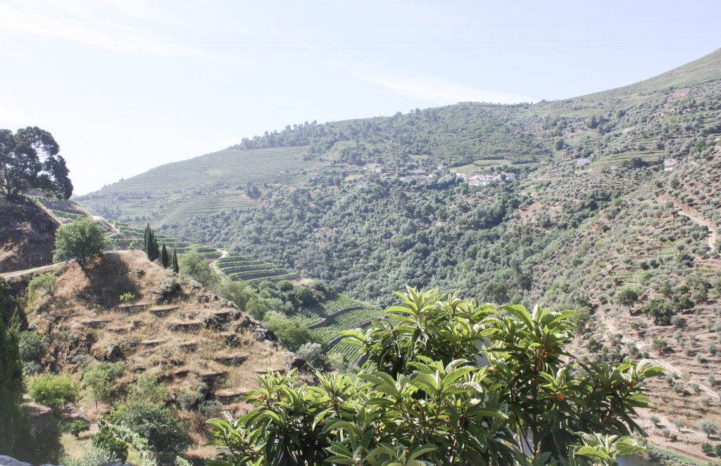 Traveling to...The Picturesque Mountains of Portugal's Wine Country || Douro Part I || Dreamery Events
