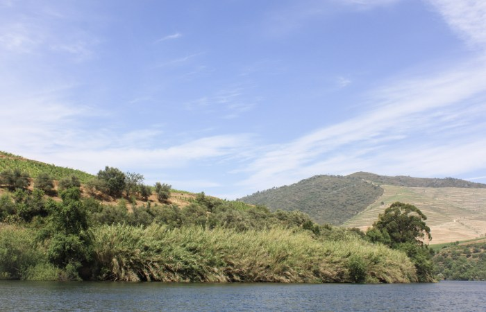 Cruising Along the Historic & Scenic Douro River