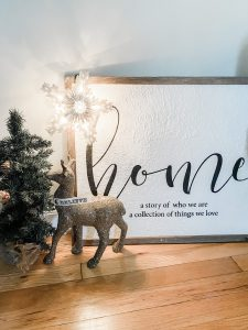 Portraits of Christmas || Dreamery Events