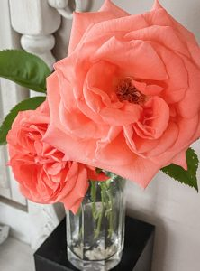 Strawberry Rhubarb Rose Cobbler || Dreamery