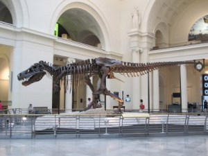 Sue the T-Rex.