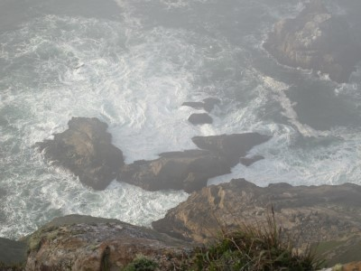 Point Reyes National Seashore, where whales spouting off could be seen in the mist.