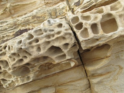 Close-up of the packed sediment near the Point Reyes Lighthouse.
