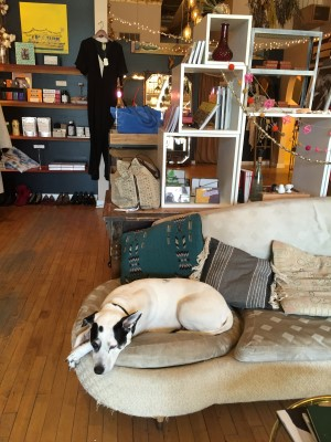 Eskell shop dog lounging in the same spot when I was here last - two years ago.