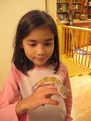 Fascinated with her leopard gecko Puntos, 2011.
