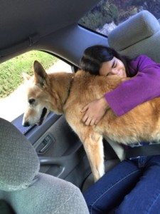 Isabella with Rex on his last car ride, November 20, 2015.