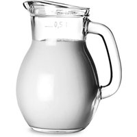 Classic Jug 17.5oz / 500ml (Case of 6)