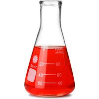 Glass Conical Flask 100ml (Single)