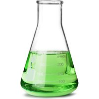 Glass Conical Flask 250ml (Single)