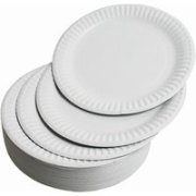 Paper Plates 23cm (Pack of 100)