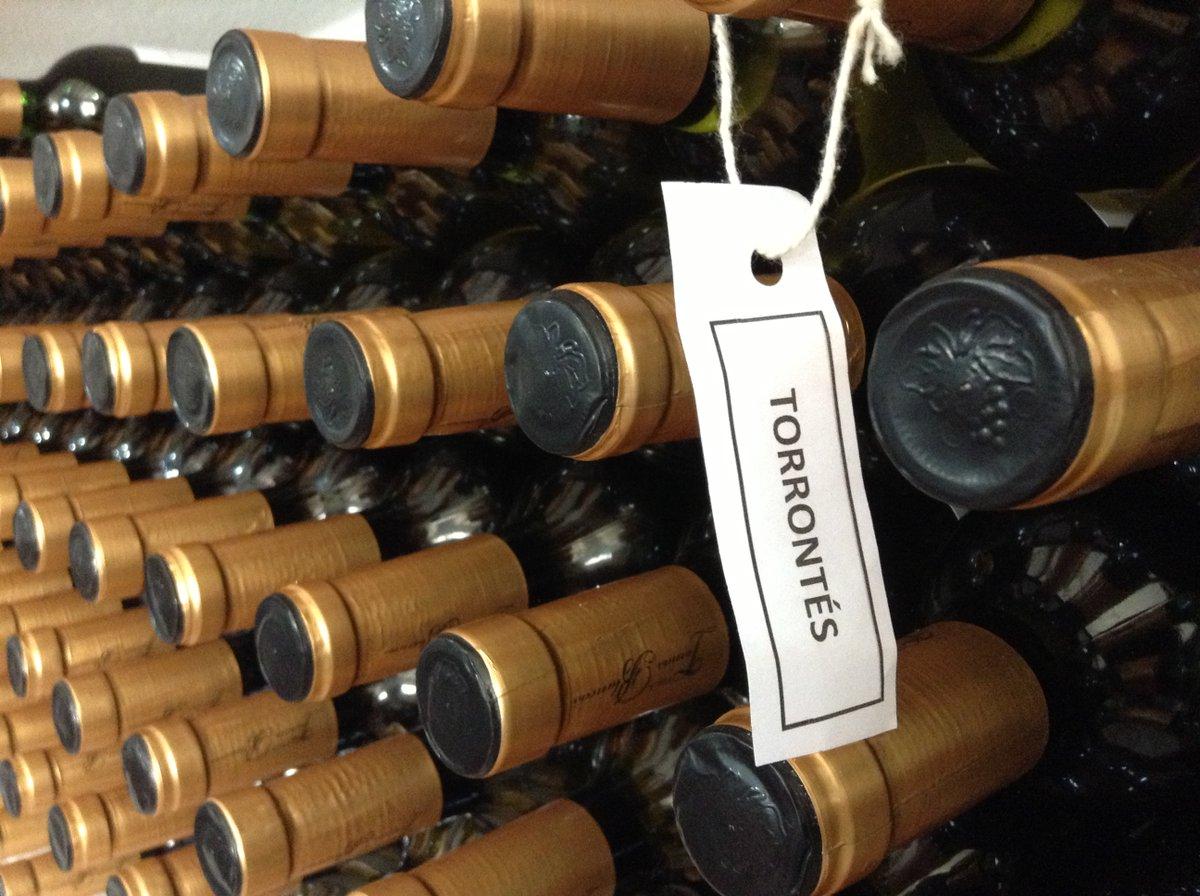 Torrontés Riojano, wine of Argentina