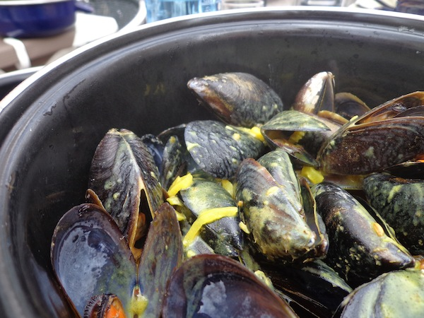 Moules in Provence