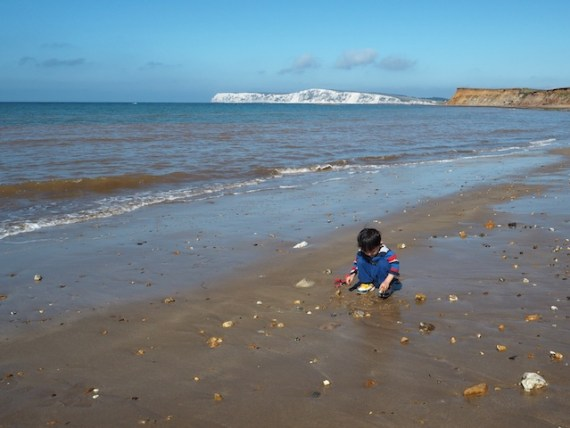 Looking for fossils on the Isle of Wight in the UK