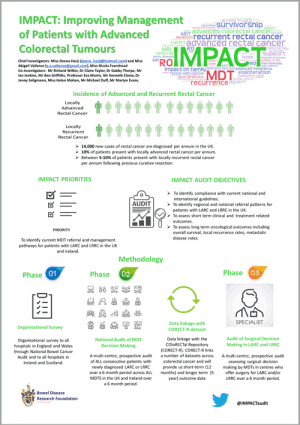 IMPACT Audit info graphic - links to PDF