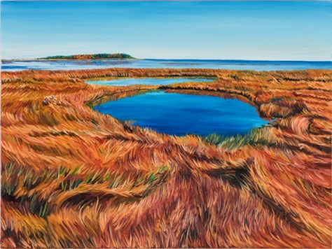 (Autumn Acadian Coastal Wetland by Michael McEwing)