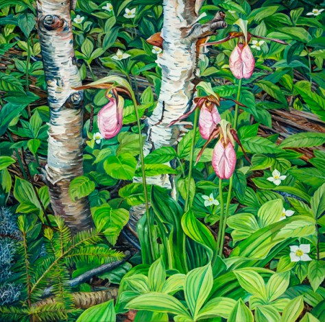 (Lady Slippers at Sea Dog Cove by Michael McEwing)