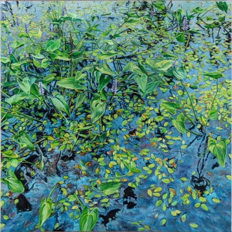 (Pickerel Weed At Estabrooks Pond by Michael McEwing)