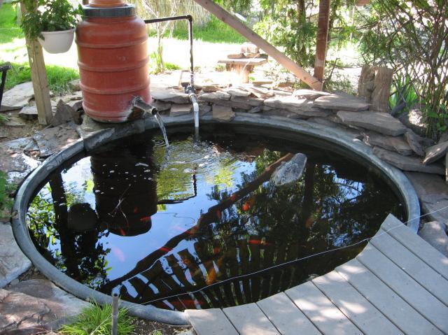 Garden Pond From A Plastic Stock Tank Theeasygarden Com