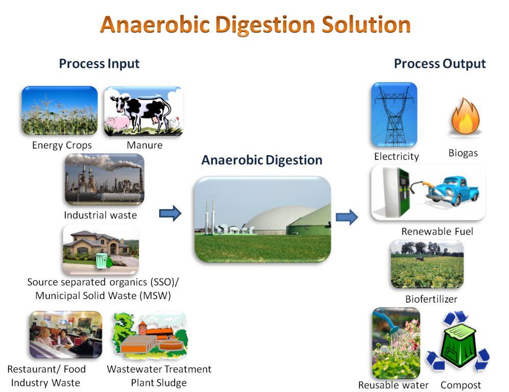 digestion diagram crop warn winch 2500 parts biogas and anaerobic