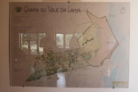 Ariel view of Vale Da Lama