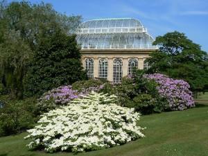 Royal Botanic Garden Edinburgh Palmhouse