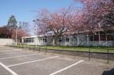 2014_04 Blackhall Library 9 (1)