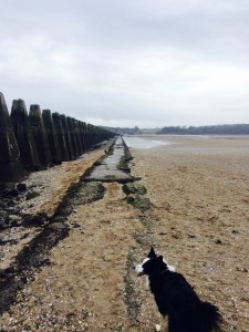 The walk to Cramond