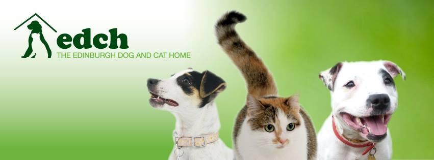 Cat And Dog Home Seafield Edinburgh