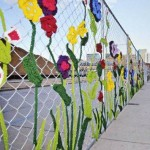 FCI flowers on fence