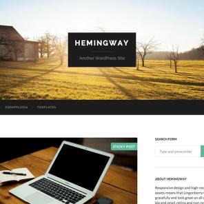 Hemingway 2014