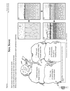 animal worksheet: NEW 822 PLANT AND ANIMAL INTERDEPENDENCE