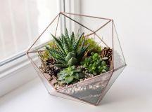 DIY: Make Your Own Green Terrarium