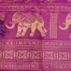Elephant Cerise Detail