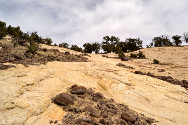 Sandstone near the top of the trail.