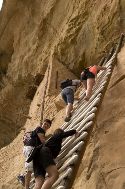 In lieu of using the original Anasazi routes up and down, the National Park Service put in this ladder for Balcony House tours.