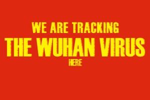 wuhan virus timeline