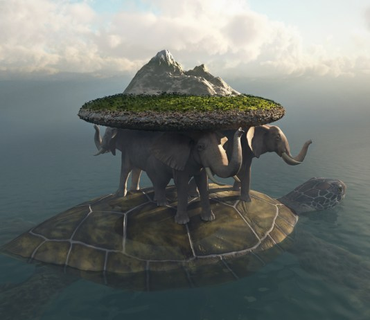 turtle of the world
