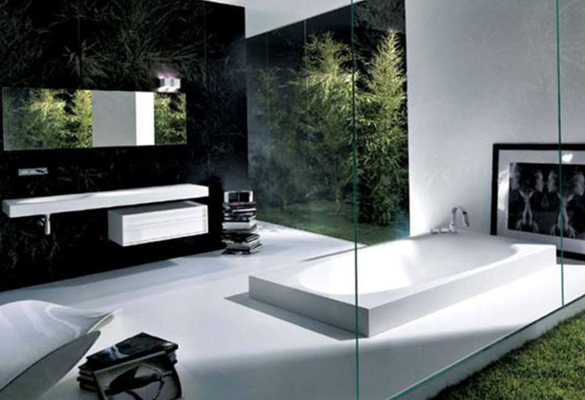 Ultra Modern Bathroom Mirrors  Home Design Ideas