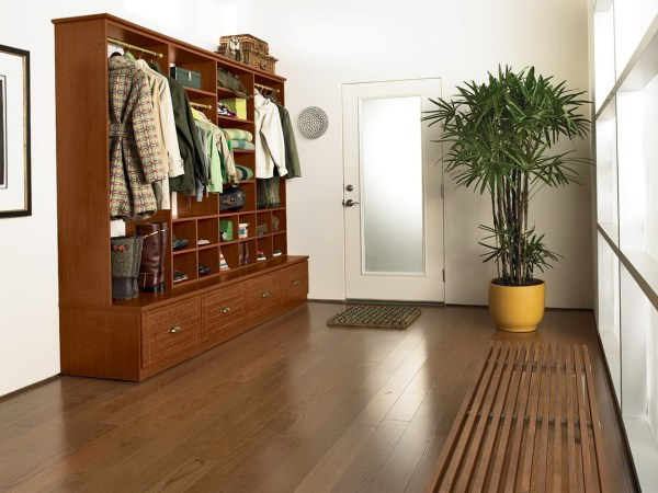 Entryway Closet Organizer Systems Home Design Ideas