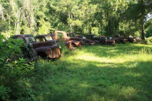 Head west across the state of FL for a lineup of Ford trucks that date back to the early 1900s.