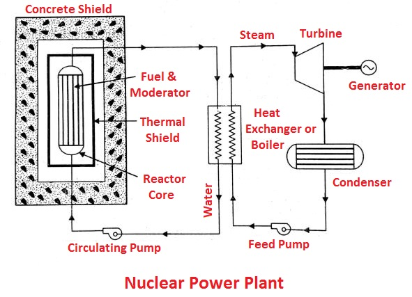 Nuclear Power Plant: Layout, Working, Advantages & More