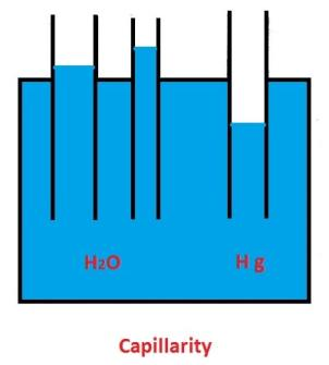 Properties of Fluids - Capillarity