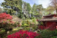 Compton Acres: Capture the essence of Japanese gardens ...