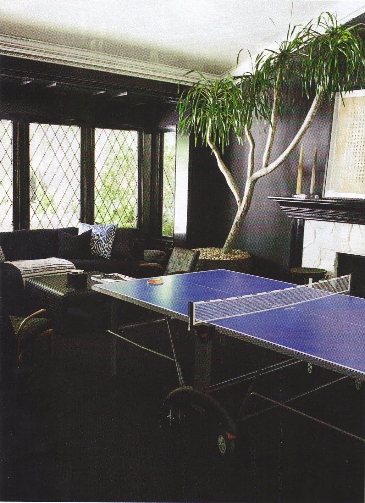 Ping Pong Pads The English Room